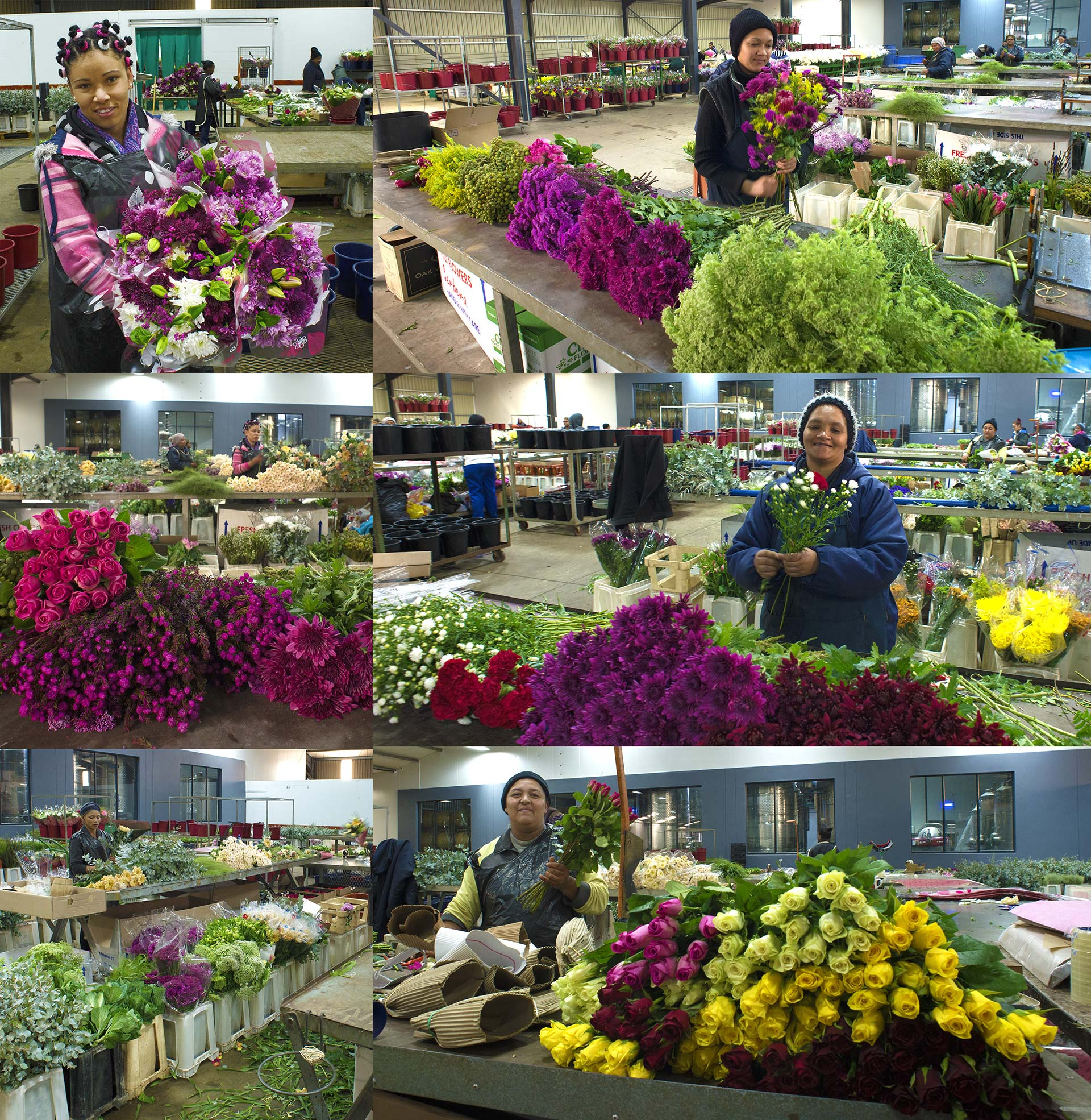 florist cape town