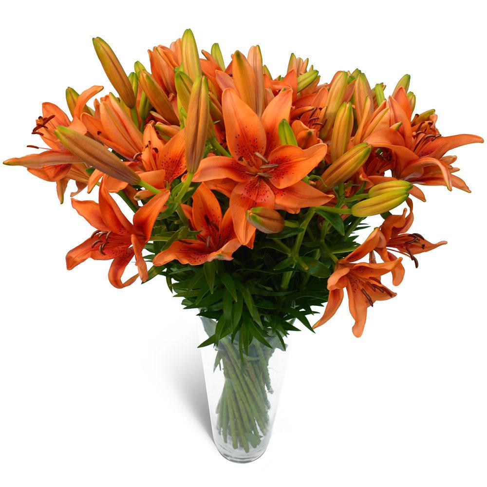 0096_orange_lilies-1.jpg