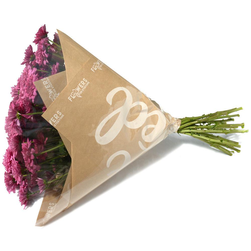 Purple Crysanthemums