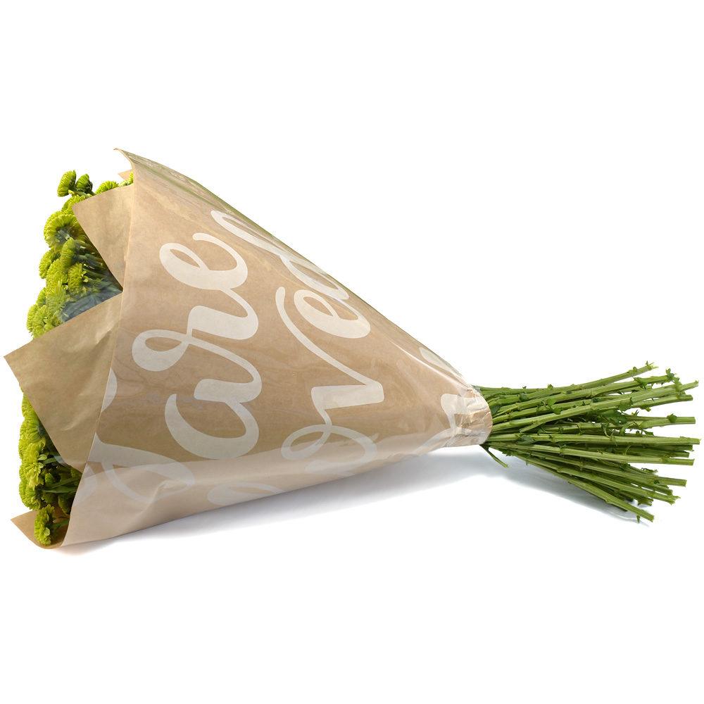 Green Crysanthemums